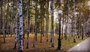 kazaryan-park-pobedy